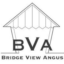 Bridge View Angus